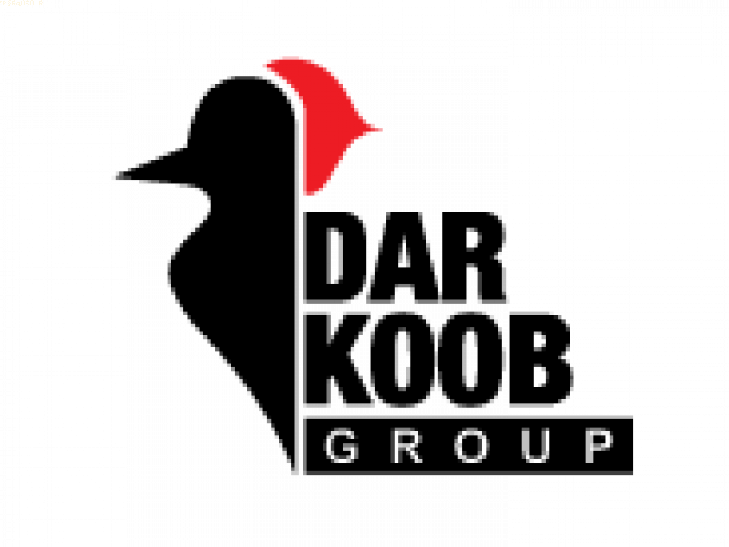 شرکت دارکوب